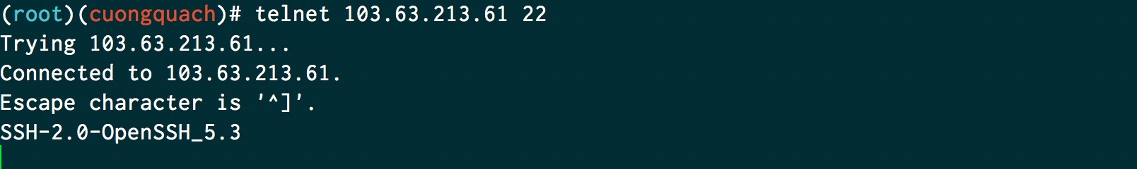 telnet port 22 đang sử dụng