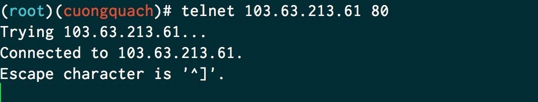 telnet port 80 đang mở