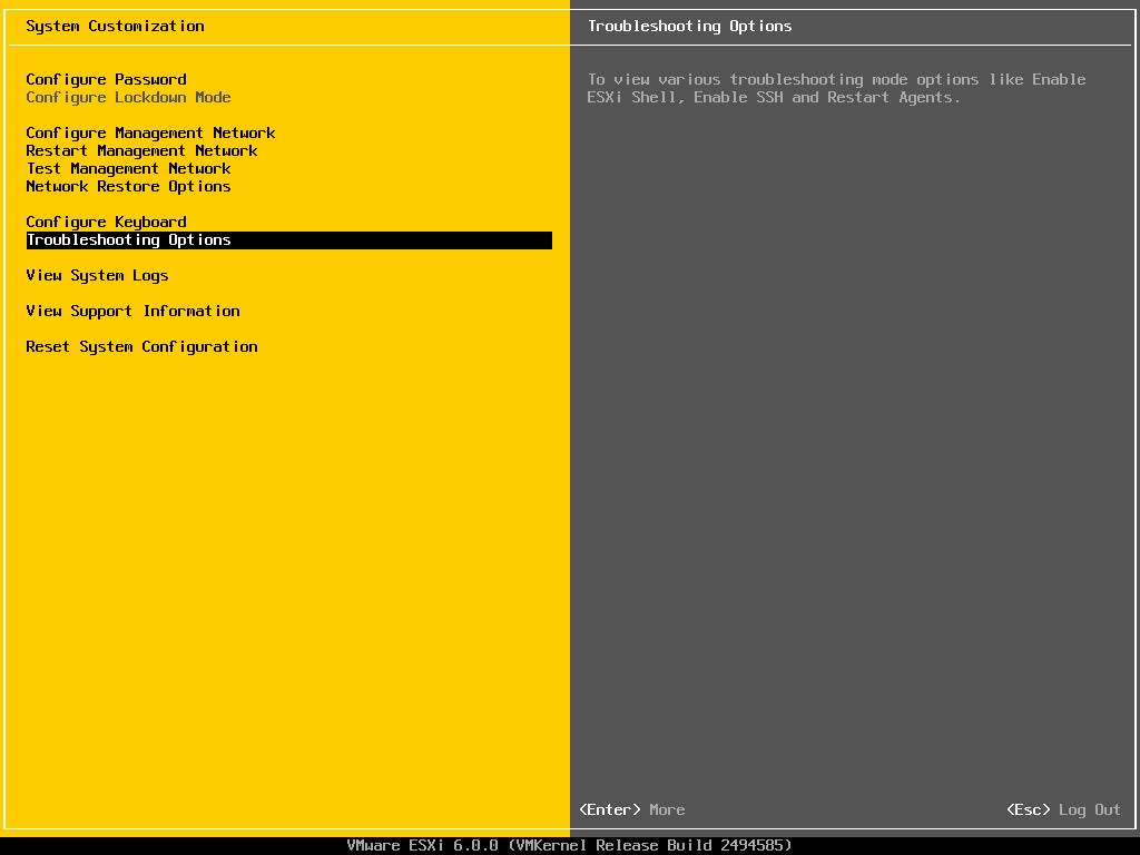 kích hoạt ssh trên esxi với console dcui - 1