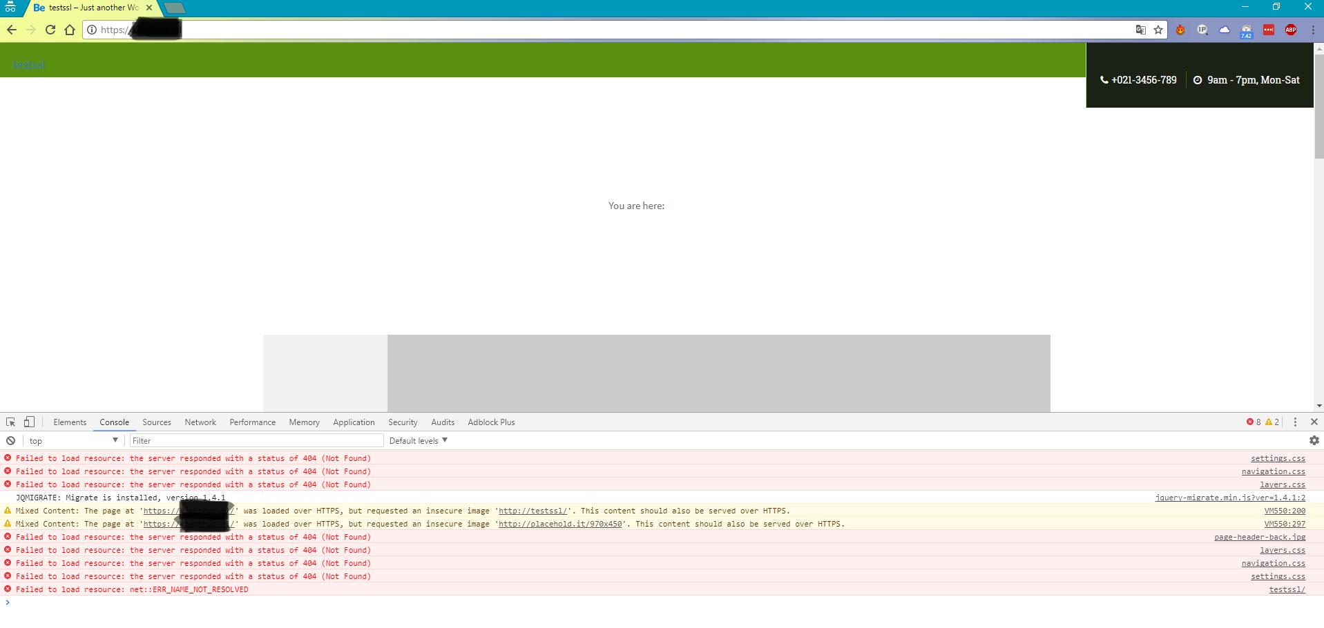 chrom developer tools check mixed-content