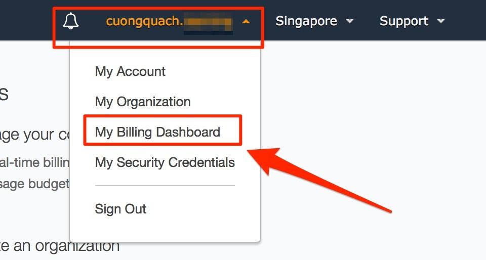 awsmc - chọn thanh toán billing info