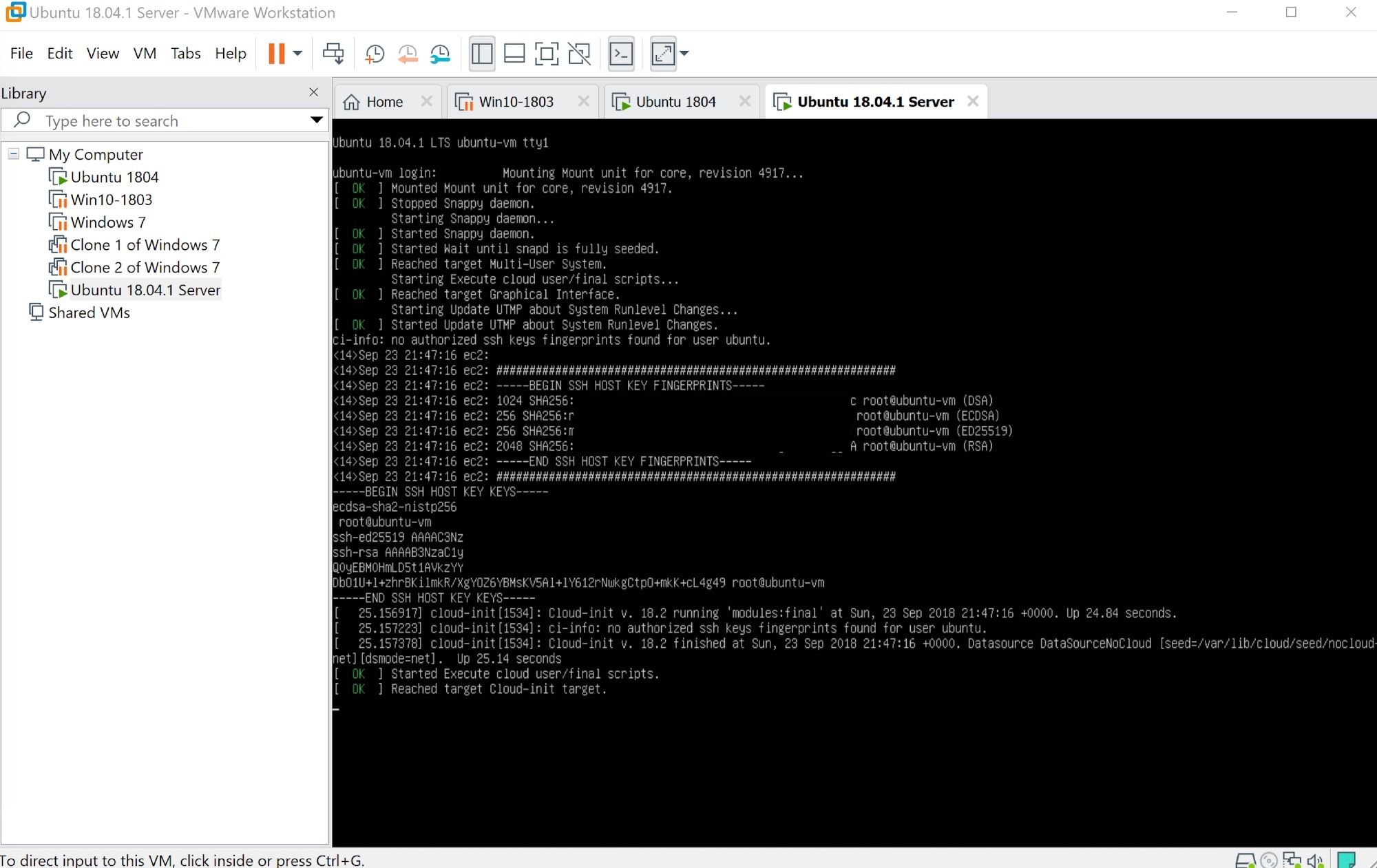 vmware workstation 15 hỗ trợ stretch mode