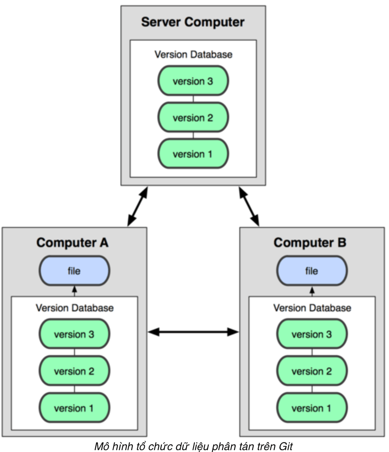 mô hình tổ chức dữ liệu phân tán trên git